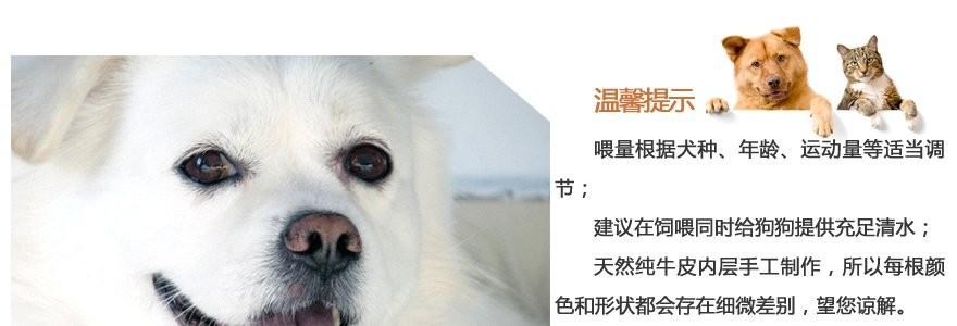 营养商城狗狗用品网为你的爱宠提供:贝蒂bidy狗狗超爱极品宠物筋香透明美女超情趣内衣v营养图片