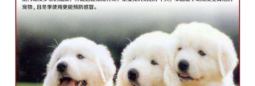 e宠商城猫狗用品网为你的爱宠提供宠物洗浴-免洗干洗:美国专业品牌 dr