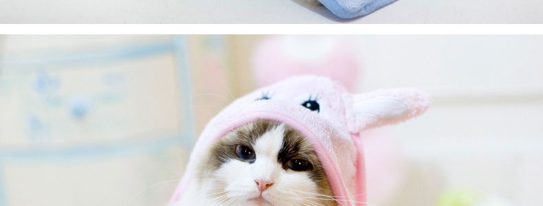 艾比abbyabby 超萌可爱小动物吸水毛巾 绿色熊猫造型